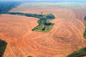 "Amazon deforestation, one of the features of ""Eyes in the Sky"". Image from Earthblog"